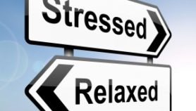 Stress! There's a lot of it about…