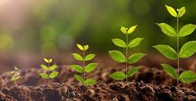 The Easiest Way To Grow Your Dental Practice